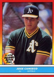 1988 Fleer Baseball's Hottest Stars