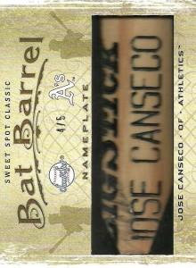 2009 Sweet Spot Classic Bat Barrels /5